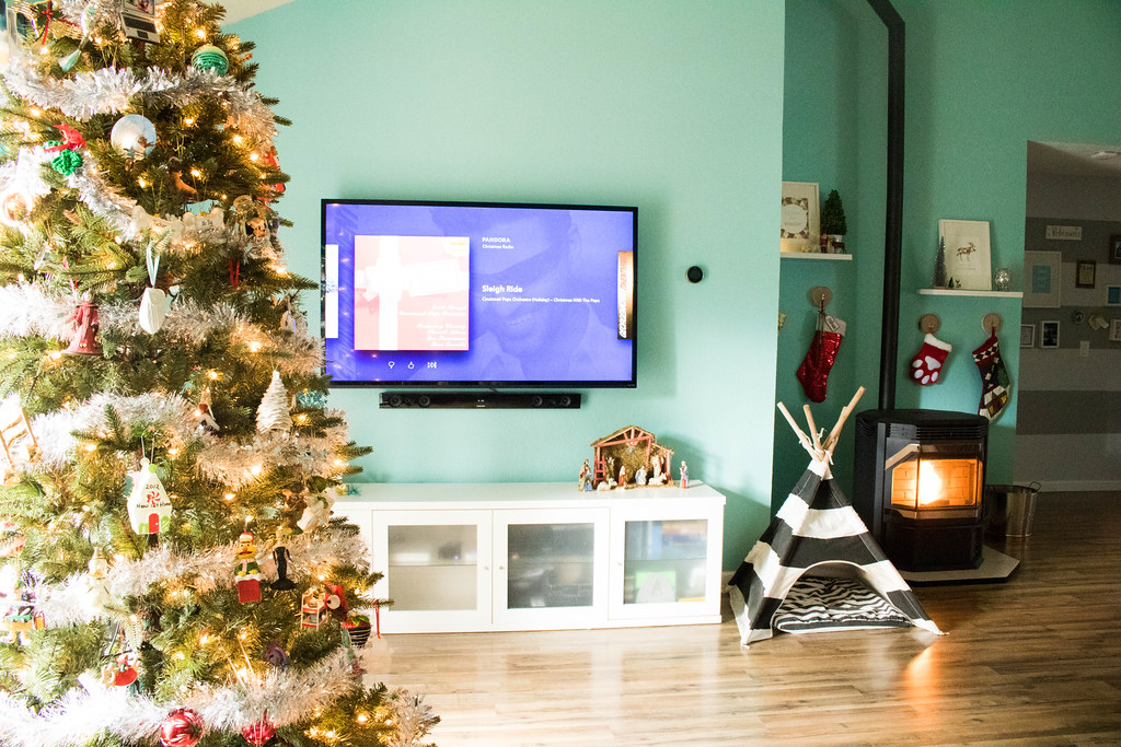 View of the tree, tv, and pellet stove