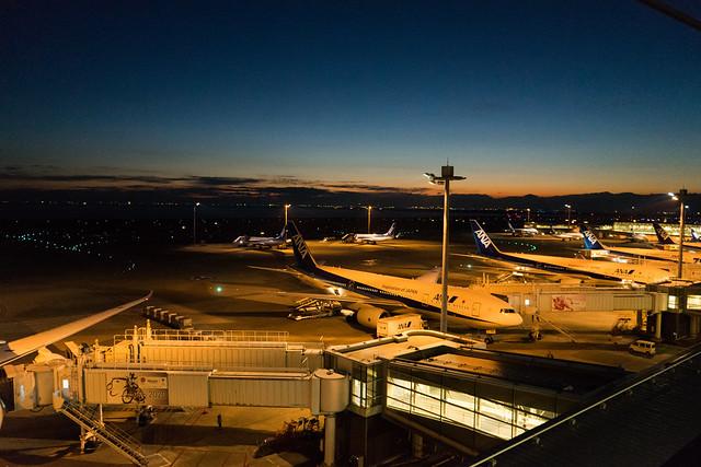初日の出2017@羽田空港第2旅客ターミナル-8.jpg
