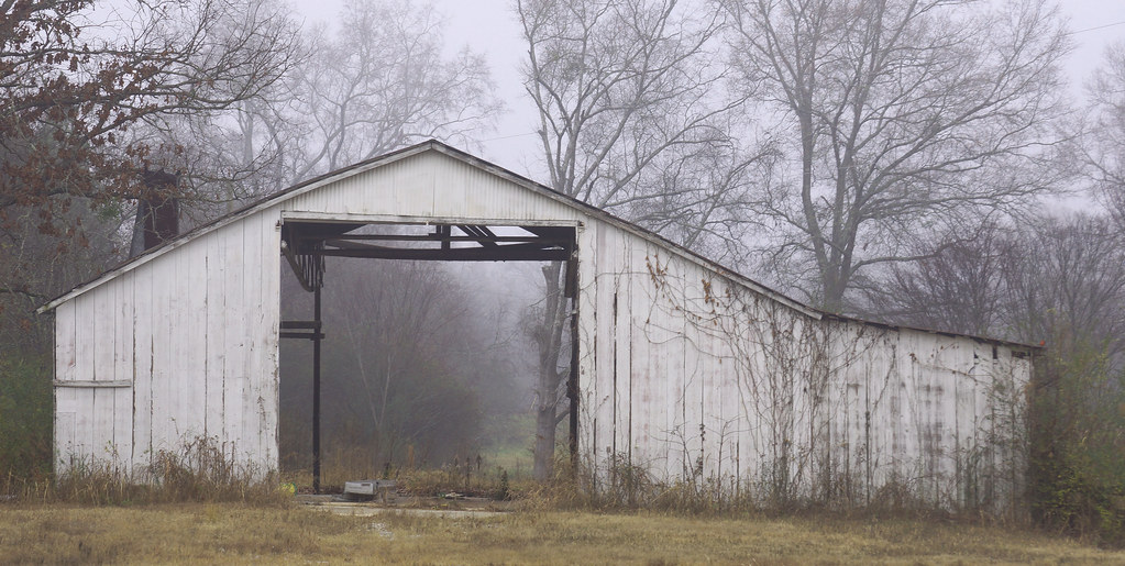 Foggy Barn 1