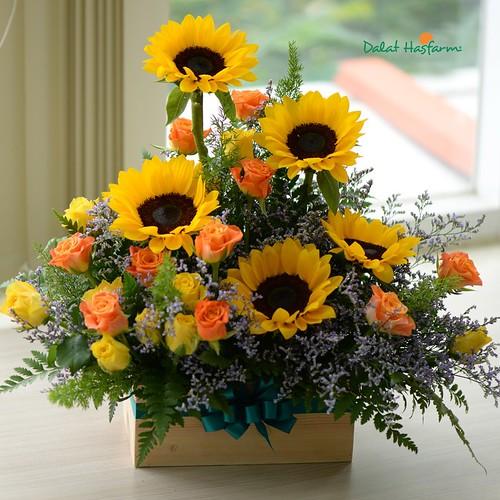 hoa hướng dương đẹp mừng sinh nhật