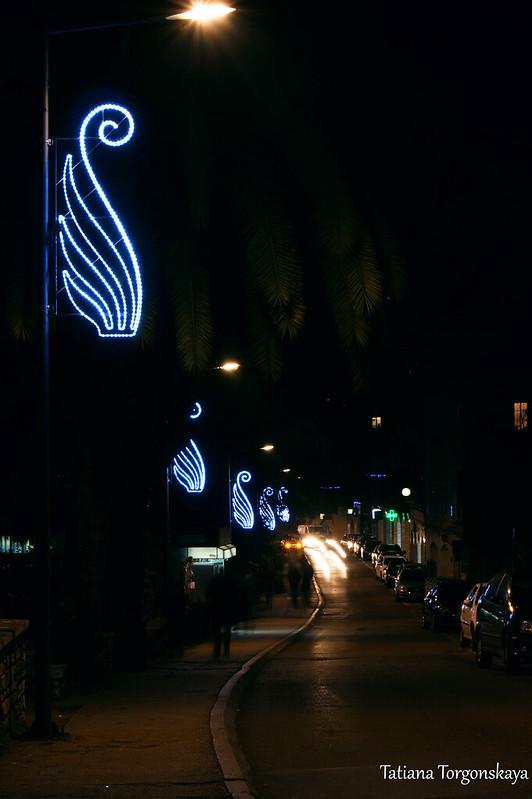 Улица Негошева