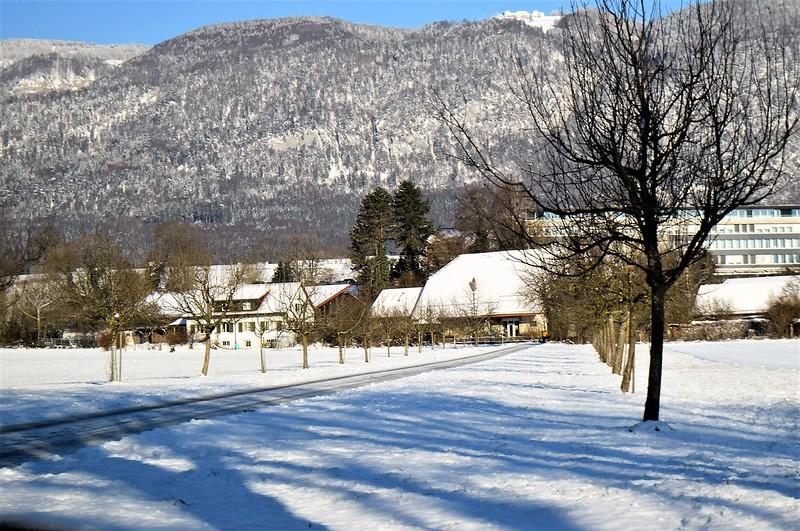 Road to Langendorf 06.01 (35)