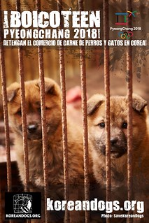 Boycott Pyeongchang_Spanish_1440x2160_o_sp