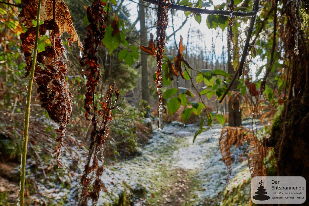 Hiking Traumschleife Litermont-Sagenweg