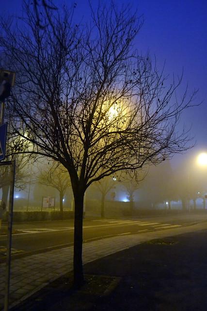 Cavenago - Nebbia