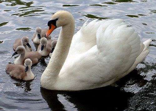 Mum and kids | by Natascha♫