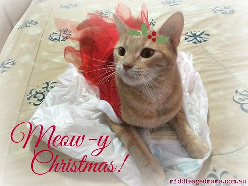 Meow-y Christmas from Miss Fleur