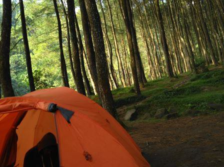 Wisata Suaka Elang Bogor | Tempat Camping Kampung Loji Cigombong Sukabumi