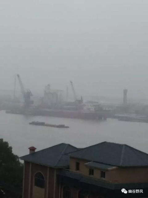 黄浦江在窒息-2