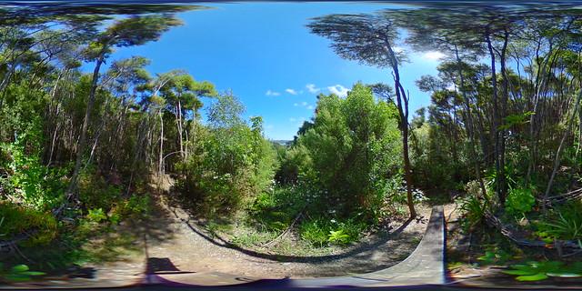 d23 Mana Garden view