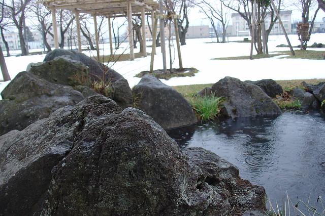 A wet rock