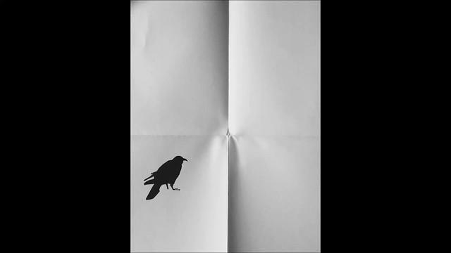 Saura's crow