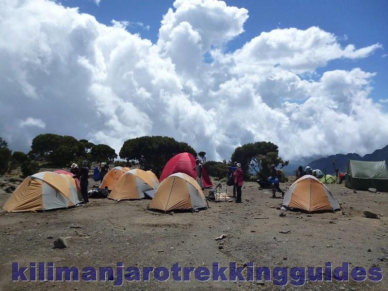 Kilimanjaro Scenes