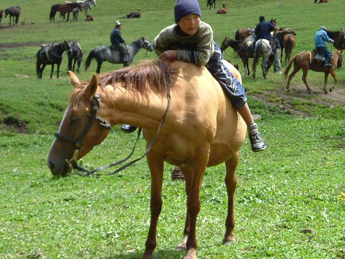 Kazakh boy on horse | by flicksta