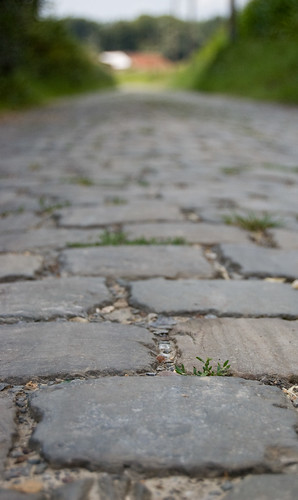 Cobblestone Road | by Denis Defreyne