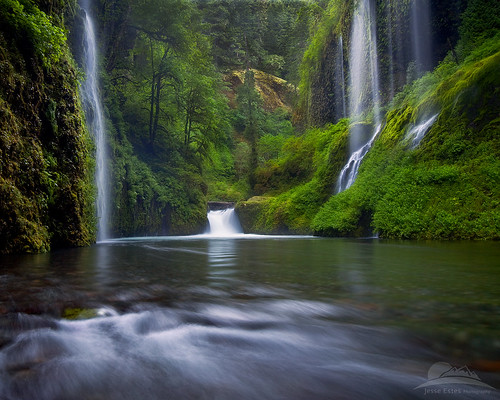 Springtime in the gorge... | by Jesse Estes