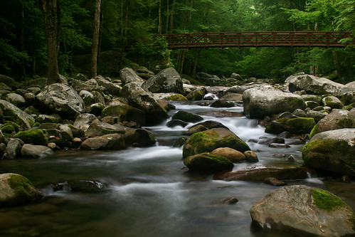 Baxter Creek Trail Footbrige, GSMNP | by Ben Pierce Photography