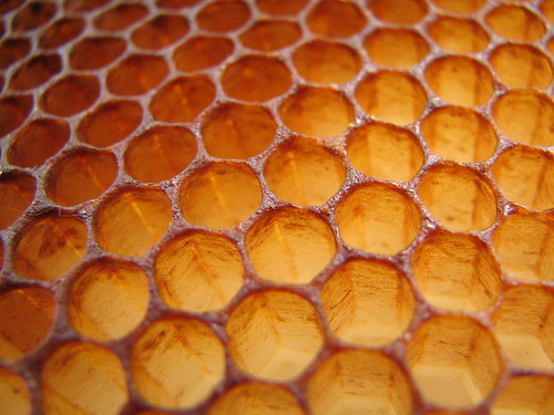 Honeycomb | by justus.thane