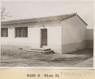 Ward 8 | by California State University Channel Islands