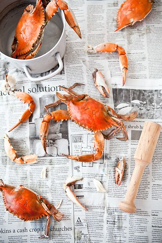 Picking Crab | by tartelette
