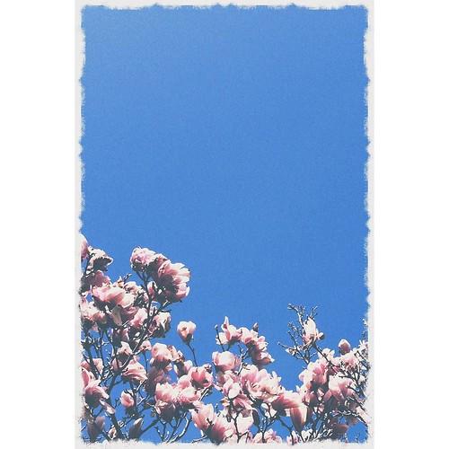 May 1 - Blue