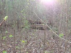 Ye Olde Log Pile