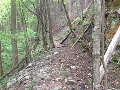 Dover Creek Railbed