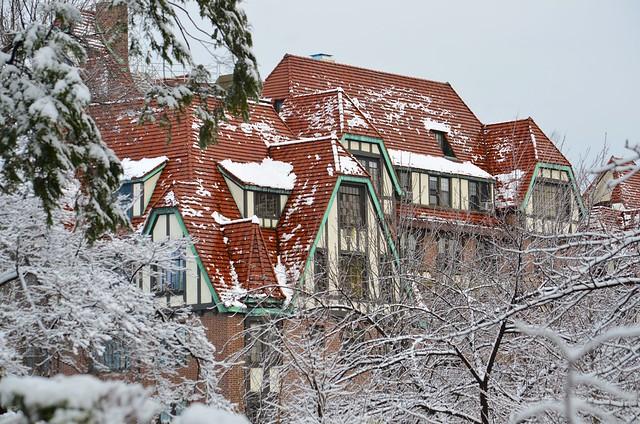 4 Dartmouth In The Snow
