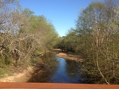 Allatoona Creek