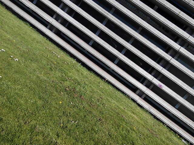 Grass&lines