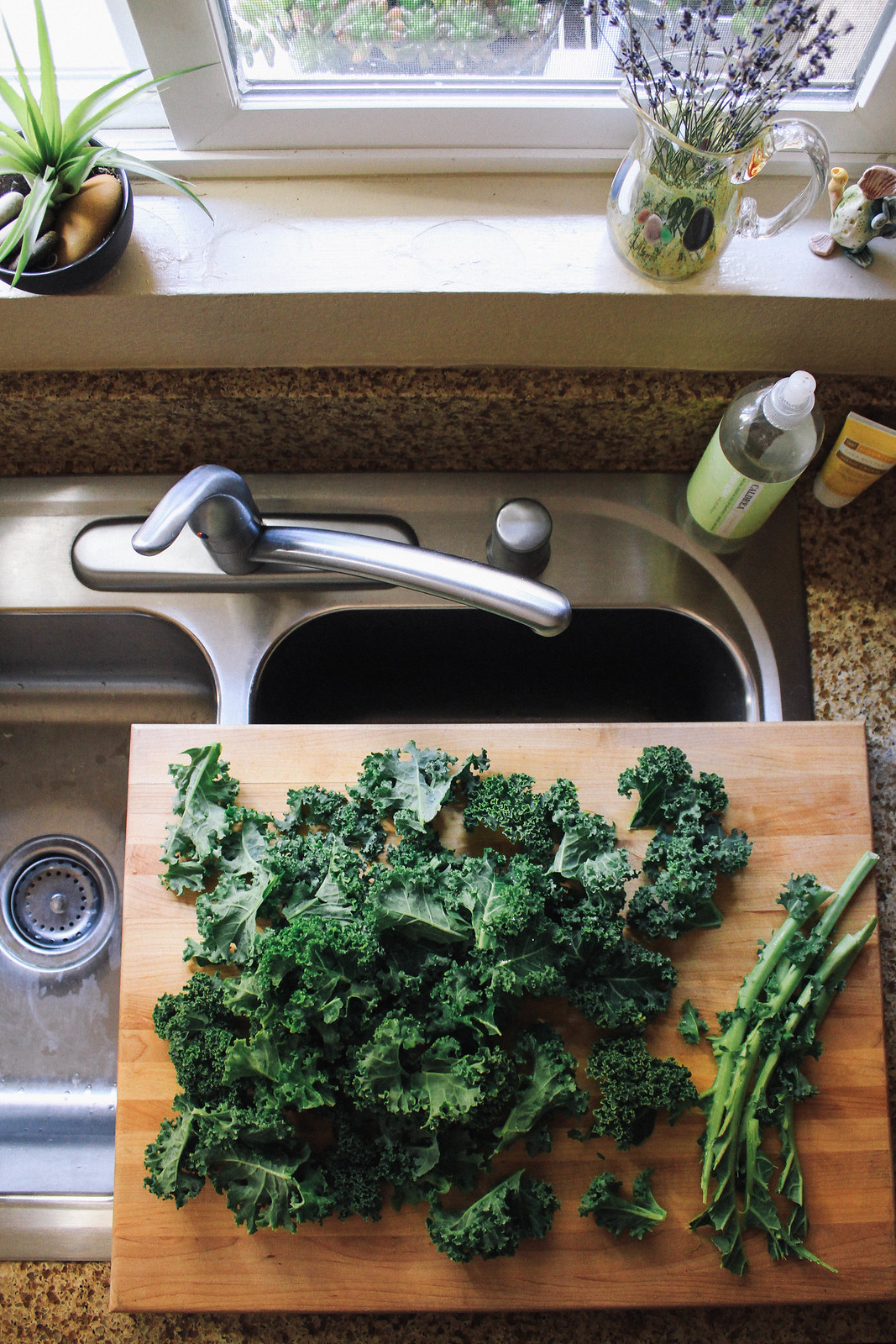 SIMPLE KALE CHIPS