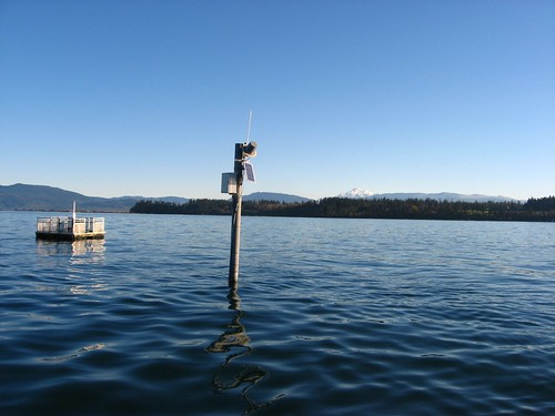 Long bay water quality