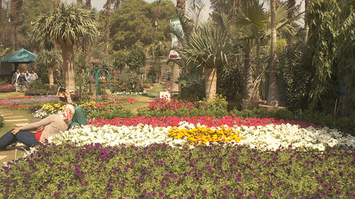 Snapping a selfie with Egypt's flag flowerbeds