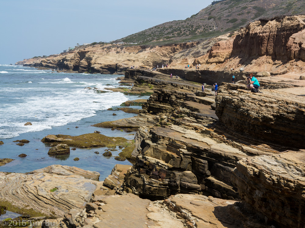 Down at the tide-pools, Point Loma, San Diego