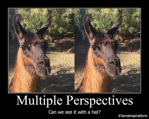 Multiple Perspectives This Is The New Creation After