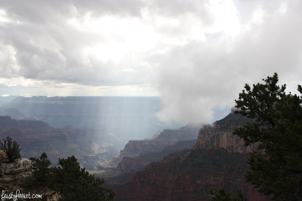 Grand Canyon North Rim_feistyharriet_October 2015 (4)