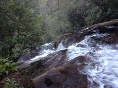 Lower Davis Creek Falls Over the Edge