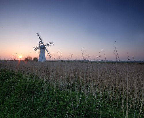 reeds, mill and sun | by The Blu-Tack Kid