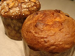 Panettone | by Wild Yeast