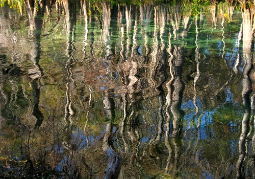 Reflections at Manatee Springs | by heurtoirfan
