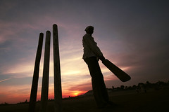 Cricket fever! | by Seema Krishnakumar