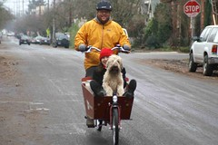 Dot, Beth, and Greg test ride a Bakfiets | by gregraisman