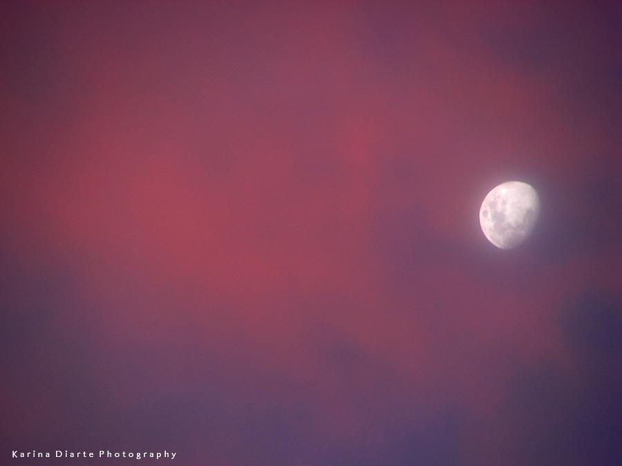 Cielo Rosado / Pink Sky