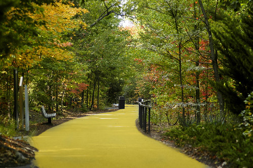 Yellow brick road? | by ucumari photography