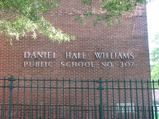 Daniel Hale Williams PS 307 | by dumbonyc