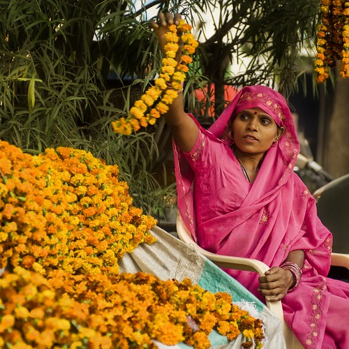 Flowers of Diwali in India | by Stuck in Customs