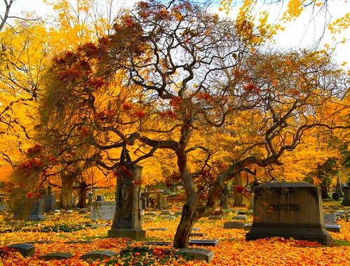 Autumn cemetary 2 | by DMCleveland