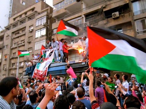 Down with Israel | by Gigi Ibrahim