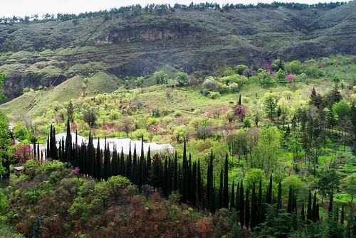 Botanical Gardens, from Sololaki Ridge, 2002, Tbilisi, Georgia
