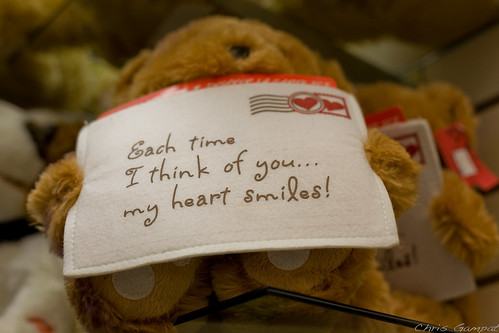 Teddy Bear has a Message For You | by ChrisGampat